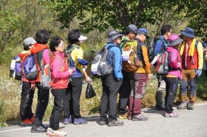 koreahikingclothesbright