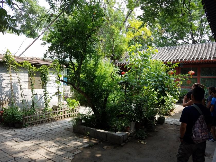 hutong_courtyard